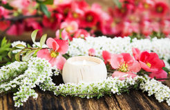 Scent Candle with Spring Flowers Stock Images