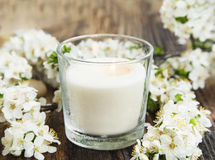 Scent Candle with White Flowers Royalty Free Stock Photos