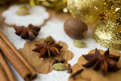 Scent of Christmas Royalty Free Stock Photo