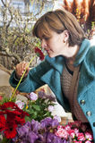 Scent of a flower. Woman picking up the scent of a Gerbera inside a florist shop stock photography