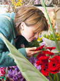 Scent of a flower. Woman absorbing the scent of a flower whilst shopping at a florist royalty free stock image
