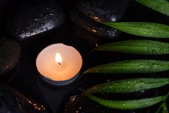 Scent lighted candle on black wet stones and green leaf with droplets, dark photography.  Royalty Free Stock Photos