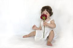 Scent of a Rose. Cute little girl sniffing the scent of a rose royalty free stock image