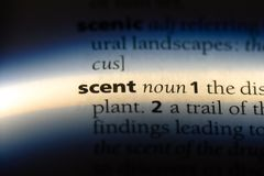 Scent. Word in a dictionary.  concept royalty free stock image