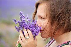 Scent of summer Stock Image