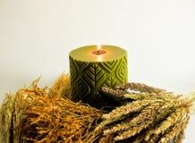 Scented κερί κεριών AGreen και μίσχος ρυζιού, χρυσό λουλούδι χλόης Στοκ Φωτογραφίες