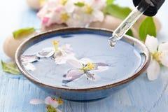 Scented νερό και λουλούδια Στοκ Φωτογραφίες