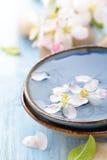 Scented νερό και λουλούδια Στοκ εικόνα με δικαίωμα ελεύθερης χρήσης