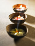 Scented candle. Zen feel,scented candle or tea light with light Stock Photography