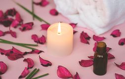 Scented candle and dry petals on pink background; wellness or sp. A background Stock Images