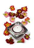 Scented candle and flowers. Isolated on white Stock Photography