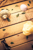 Scented candle sea shells wooden background Royalty Free Stock Images