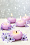 Scented candles and violet hyacinth flowers Royalty Free Stock Photography