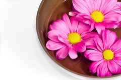 Scented massage oil in tibetan bowl. Royalty Free Stock Photos