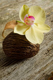 Scented potpourri. With orchid on wood background royalty free stock images