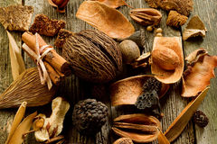 Scented potpourri Stock Images