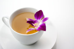 Scented tea Stock Images
