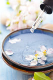 Scented water and flowers. Stock Photography
