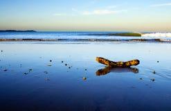sceny plażowy piękny nowy taipa Zealand Zdjęcia Stock
