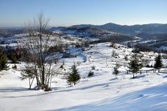 sceny wiejskiej zimy Obraz Royalty Free