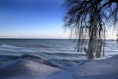 sceny zimowe Zdjęcie Stock