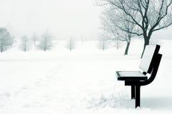 sceny zimowe Zdjęcia Royalty Free