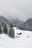 sceny zimy mglista Obrazy Royalty Free