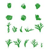 Scetch set of  silhouettes buds and leaves Stock Photography