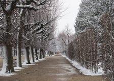 Schönbrunn-Palast-Garten im Winter mit Schnee Lizenzfreie Stockfotos