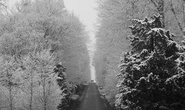 Schönbrunn-Park mit in Winter mit Schnee Stockfoto