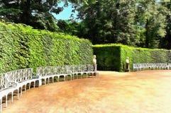 Schöne malerische Büsche in Catherine Park stock abbildung