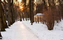Schöne Winterlandschaft des Parkfußwegs auf Sonnenunterganghintergrund und blattlosen Bäumen Zeit für das Gehen mit Familie, Hund lizenzfreies stockbild