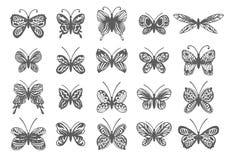 Schöner tropischer Schmetterlingssatz Vektor lokalisierte Elemente auf weißem Hintergrund lizenzfreie abbildung