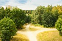 Schöner Wald mit dem hellen Sonnenschein, der durch die Bäume scheint Schotterstraße durch sonniges Grün lizenzfreie stockbilder