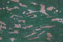 Schäbige alte grüne hölzerne Bretter der Beschaffenheit Stockfoto