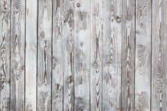 Schäbige hölzerne Planken, Weiß und Siena brünieren Lizenzfreie Stockbilder