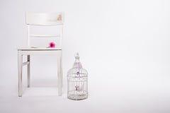 Schäbiger Stuhl mit Birdcage und Blume stockfotos