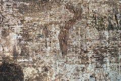 Schäbiges Holzverkleidungs-Sperrholz-strukturierter Hintergrund Stockfoto