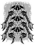 Schädel Stockbilder