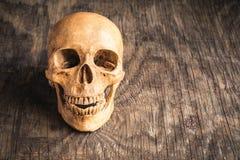 Schädel auf einem alten hölzernen Hintergrund Lizenzfreies Stockfoto