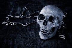 Schädel auf einem alten hölzernen Hintergrund Stockbilder