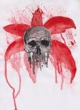 Schädel auf einem roten Hintergrund Stockbilder