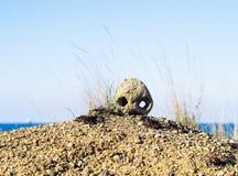 Schädel auf Sand in der Wüste Lizenzfreies Stockbild