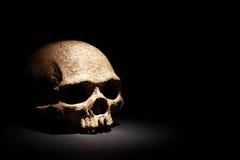 Schädel auf Schwarzem stockbild