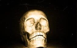 Schädel auf schwarzem backround lizenzfreies stockfoto