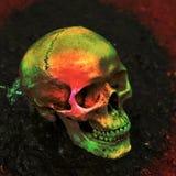 Schädel gefüllt mit Farbe. lizenzfreie stockbilder