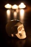 Schädel, Halloween-Hintergrund Lizenzfreie Stockfotos