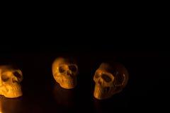 Schädel, Halloween-Hintergrund Lizenzfreie Stockbilder