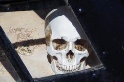Schädel hinter Fensterscheibe Lizenzfreies Stockfoto