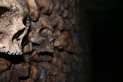 Schädel im Catecombs Stockbild